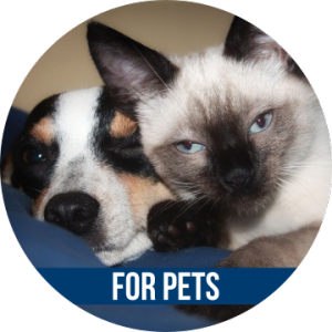 Link to FOR PETS with image of dog and cat
