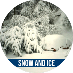 Link to SNOW AND ICE with image of tree and car covered with snow
